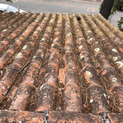 Traitement de toiture en tuile